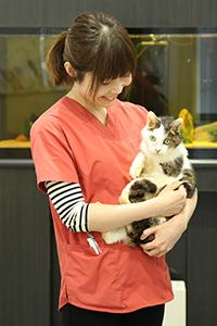 富田梨恵子